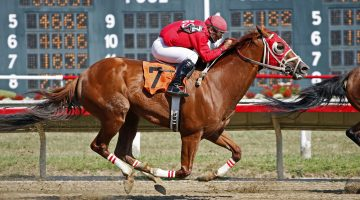 The win and each way bet Explained